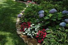 Chantilly Gardens / Garden/yard/exterior / by Rhonda Baughman-Bateman
