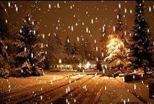 Christmas & Winter Wonderland