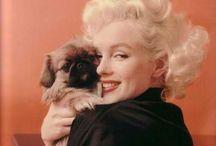 Marilyn Monroe / by Cynthia Riza