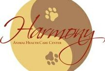 Pennyslvania Vets Who Practice One or More Modalities in Holistic and Integrative Veterinary / http://www.bestcatanddognutrition.com/roger-biduk/list-of-900-u-s-holistic-integrative-veterinarians/