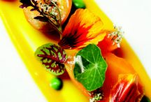 Fine Cuisine / my best recommendations and inspirations