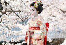 kimomo kimchee krimi kimoni