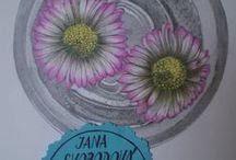 tužky, pastelky / ručně kreslené grafitovými tužkami nebo pastelkami