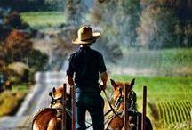 Amish!!