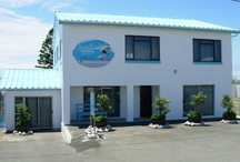 House 2 - Seagulls Nest / Self Catering Accommodation.Centrally situated between the harbour and beach the Main Street house is well positioned for the guests to enjoy the best that Struisbaai has to offer, fishing and all kinds of wind sports on the beach.Note that the top floor, ground floor and flat are rented out separately.Sleeps 17.