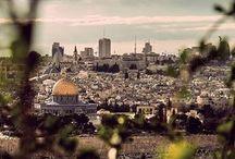 فلسطين / وطني الحبيب