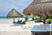 Tulum / Extraordinary properties in this area