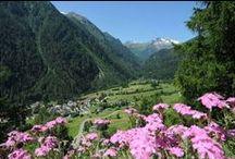 Alla scoperta della Val di Pejo / Nel cuore del Parco Nazionale dello Stelvio la Val di Pejo offre ai propri ospiti una vacanza rilassante e affascinante, a contatto con la natura e all'insegna dello sport!