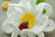 Haken - Bloemen