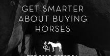 The Sale Horse / Get smarter about buying and selling horses.