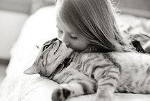Animal - Friends