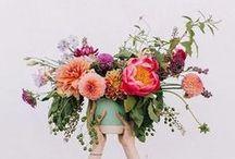 Flores / La belleza de las flores