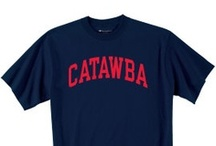 Gear Up! / Some great ideas for donning your Catawba Blue and White! #gocatawba