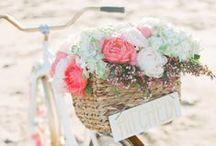 Spring Weddings / Beachfront Spring Weddings.