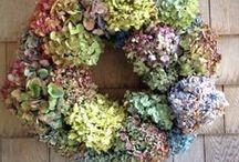 HORTENSIA / HYDRANGEA / Wat je allemaal met hortensiabloemen kunt doen