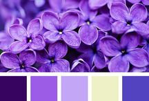 Yarn Colour Combos
