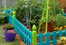 GARDEN & YARD / Growing food, trees, herbs, flowers, raised beds, fencing, creative yard design, different types of fences, tips on growing.