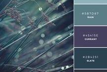 • Harmonies Colorées •