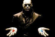 Matrix / Máte rádi fantasy? My nejvíc ujíždíme právě na Matrixu :)