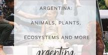 Explore Argentina / Are you ready to discover Argentina?  Our Learning Capsule contains over 60 pages of rich content, STEM based learning opportunities, interviews, recipes and art projects, plus much more! We've pinned sample content from our Learning capsules plus all kinds of interesting and beautiful pins that feature the best of Argentina.