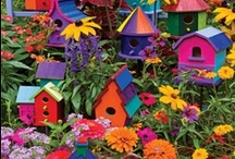 ❤ HOME TWEET HOME / Birds House