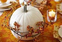 Autumn Inspirations / Fall inspirations to decorate your home.