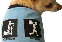 Furry Friends! / Even your furry friends should dress in style!