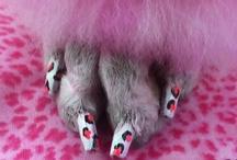 Dog Nail Polish & Nail Art / Dog nail polish and Nail Art by some of the most talented Creative Groomers!
