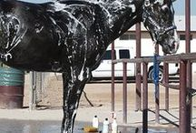 DIY and tips for equestrians