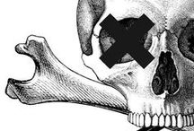 Skulls, skeletons and other little things! / by Douglas Morsch
