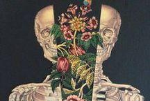 Anatomy Art / Inspiring Anatomy Art