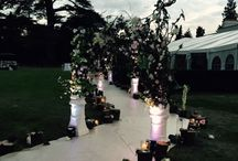 Wedding Arches / Great for creating Bridal paths
