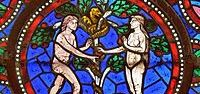Paradise / Paradise pictures (Adam and Eve)