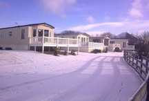 Christmas  / Winter time at meadow lakes