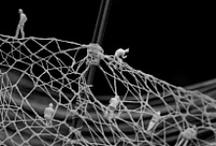 Bobbin lace and Needle lace / by Irene Gijselhart
