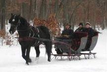 Romantic Michigan
