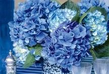 My Blues / by Sweet Caroline