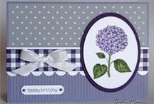 card & tags / paper