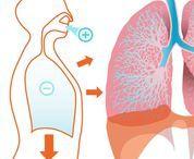 Дыхательные гимнастики / Дыхание -это жизнь.Приёмы правильного дыхания .