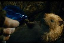 Sebastian the hedgehog / The cutest character of The Hobbit movie ... Sebastian the hedgehog!  Fan art, movie shots and other Sebastian goodies.