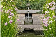 KERT - Víz a kertben