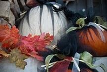Halloween Ideas / by LaJuana Beers