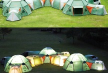 Camping Ideas / by LaJuana Beers