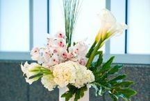 Studio AG Florals / Photos of florals from daily orders or events.