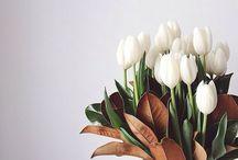 Flowers.Blomster.