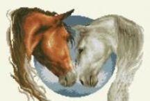 Hoefdieren / Paarden, koeien ,herten enz