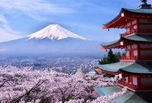 """L'épicerie Japonaise / """" La cuisine Japonaise est une cuisine de condiments ! Faites vos compositions autour du soja, du yuzu, des bouillons ou encore du vinaigre de riz. """""""