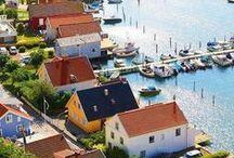 """L'épicerie Suédoise / """"La cuisine Suédoise est une cuisine naturelle et saine, issue des forêt et des lacs recouvrant presque la moitié du pays. Découvrez les baies scandinaves sous toutes leurs formes."""""""