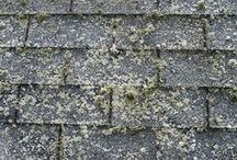 Roof Cleaning in Bergen County NJ. Perfection Plus Roof Washing / Perfection Plus is a local Bergen County NJ company specializing in residential roof cleaning and roof washing. Perfection Plus uses state of the art non-pressure equipment that is specifically designed for roof cleaning. Our process will safely clean your dirty grimy roof to like new condition with no shingle damage. Cleaning your roof is an important part of home maintenance. Contact Perfection Plus now for expert advice and a free roof evaluation.