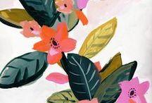 botanical (plants + fruit illustrations)